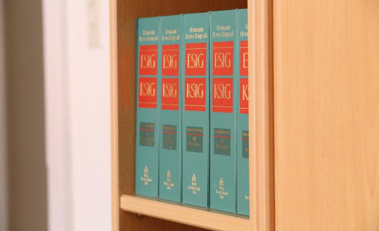 Bücher über Steuer und Rechte